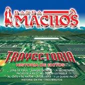 Trayectoria by Banda Machos