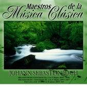 Maestros de la musica clasica - Johann Sabastian Bach by Johann Sebastian Bach