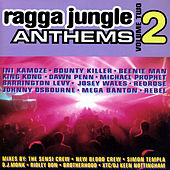Ragga Jungle Anthems, Vol. 2 by Various Artists