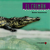 El Caiman, Sones Huastecos by Various Artists
