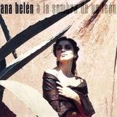 A La Sombra De Un León by Ana Belén