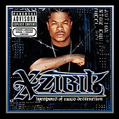 Weapons of Mass Destruction (Explicit) by Xzibit