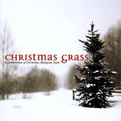 A Celebration Of Christmas... by Christmas Grass
