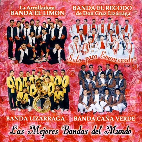 Solo Para Enamorados, Vol. 1 by Various Artists
