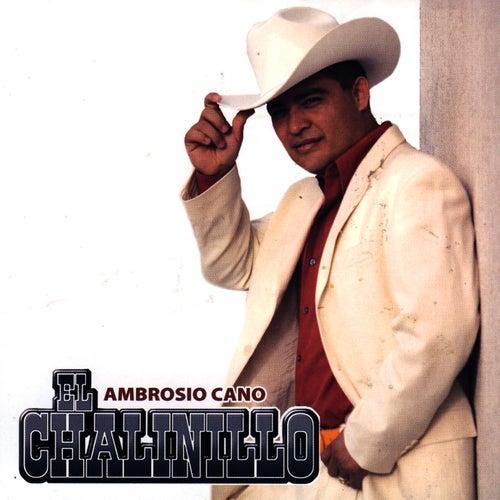 Ambrosio Cano by El Chalinillo