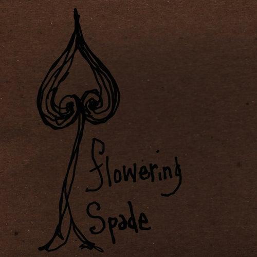Flowering Spade by Sean Hayes