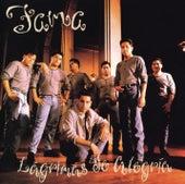 Lagrimas De Alegria by Fama