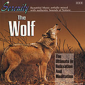 Wolf by John St. John