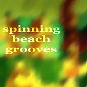 Spinning Beach Grooves by Various Artists