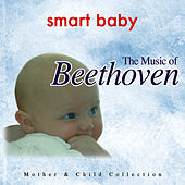 Smart Baby: The Music of Beethoven by The London Fox Orchestra