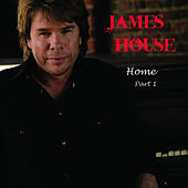 Hard Times For An Honest Man 2009 by James House