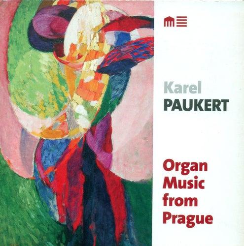Organ Recital: Paukert, Karel - DVORAK, A. / FOERSTER, J.B. / JANACEK, L. / KLICKA, J. / NOVAK, V. / WIEDERMANN, B.A. by Karel Paukert