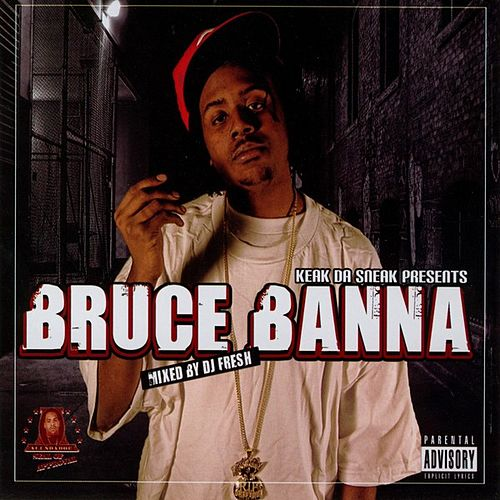 Bruce Banna (Mixed By DJ Fresh) by Various Artists