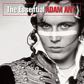 The Essential Adam Ant by Adam Ant