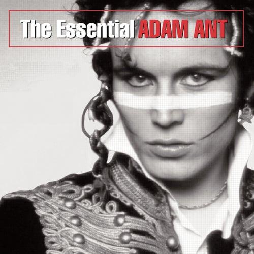 The Essential Adam Ant by Adam Ant
