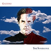The Syndrone by Gazebo