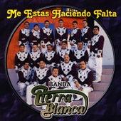 Me Estas Haciendo Falta by Banda Tierra Blanca