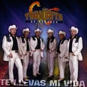 Te Llevas Mi Vida by Tormenta De Durango