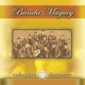 Coleccion Diamante by Banda Maguey