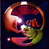 Live at The Academy Vol. 1 by The Chameleons