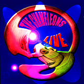 Live at The Academy Vol. 2 by The Chameleons