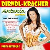 Dirndl-Kracher by Antonia Aus Tirol
