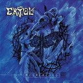 Mesmerized by Extol