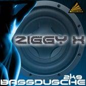 Bassdusche 2K9 by Ziggy X