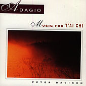 Adagio: Music For T'ai Chi by Peter Davison