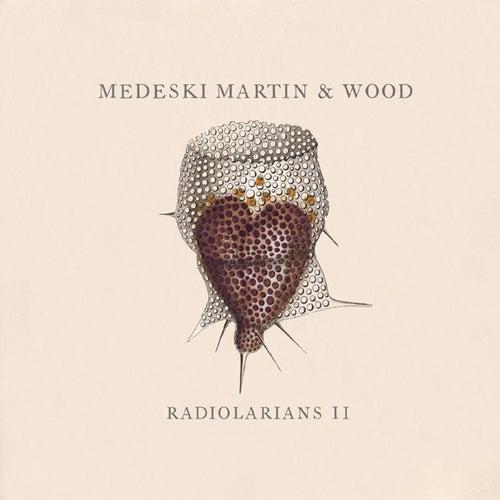 Radiolarians II by Medeski, Martin and Wood