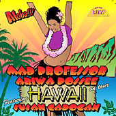 Hawaii on Tour by Various Artists