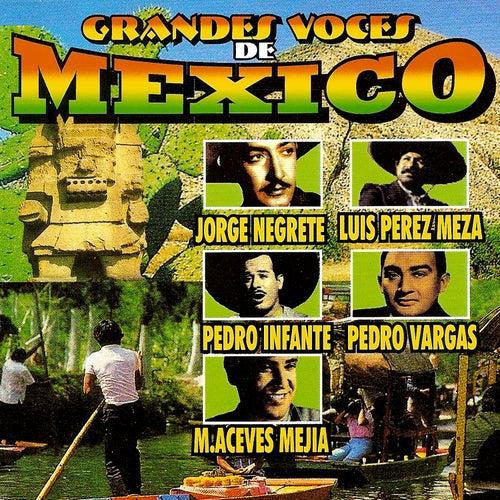 Grandes Voces De Mexico by Various Artists