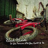 Do You Remember Who You Wanted to Be by Black Blondie