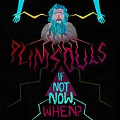 If Not Now, When? by The Plimsouls