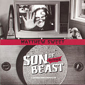 Son Of Altered Beast by Matthew Sweet