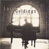 Awareness by Larry Goldings
