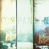 Companion by Companion