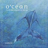 O'Cean: Flute And Sounds Of The... by Larkin