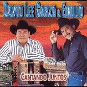 Cantando Juntos by David Lee Garza