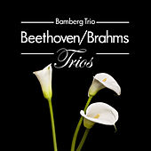 Beethoven/Brahms: Trios by Bamberg Trio