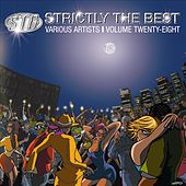 Strictly The Best Vol. 28 by