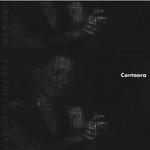Cantaora by Carmen Linares