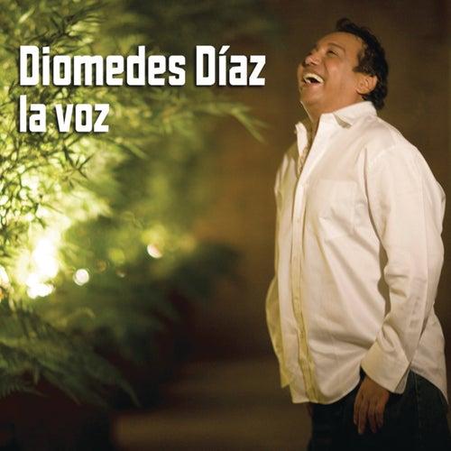 La Voz by Diomedes Diaz