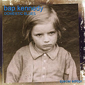 Domestic Blues by Bap Kennedy
