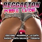 Reggaeton Perreo Latino by Reggaeton Latino