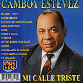 Mi Calle Triste by Camboy Estevez