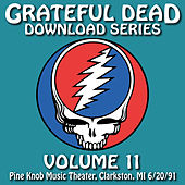 Grateful Dead Download Series Vol. 11: Pine Knob Music Theater, Clarkston, MI, 6/20/91 by Grateful Dead