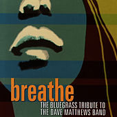 Breathe: The Bluegrass Tribute To Dave Matthews von Pickin' On
