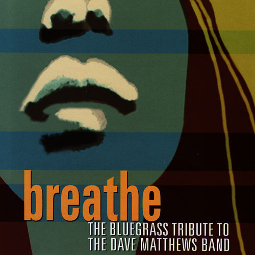 Breathe: The Bluegrass Tribute To Dave Matthews by Pickin' On
