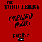 The Todd Terry Project